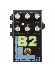 AMT Electronics Legend Amps 2 B2
