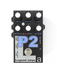 AMT Electronics Legend Amps 2 P2