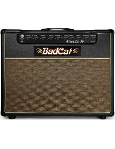 Bad Cat Black Cat 30C