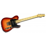 Fender Telecaster® Modern Player Plus MN Honey Burst