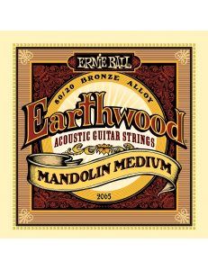 Ernie Ball Earthwood 80/20 Bronze Medium Light 2065