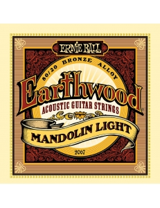 Ernie Ball Earthwood 80/20 Bronze Light 2067